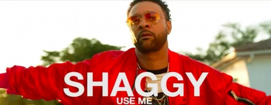 "Image: Shaggy Drops Brand New Video ""Use Me"""